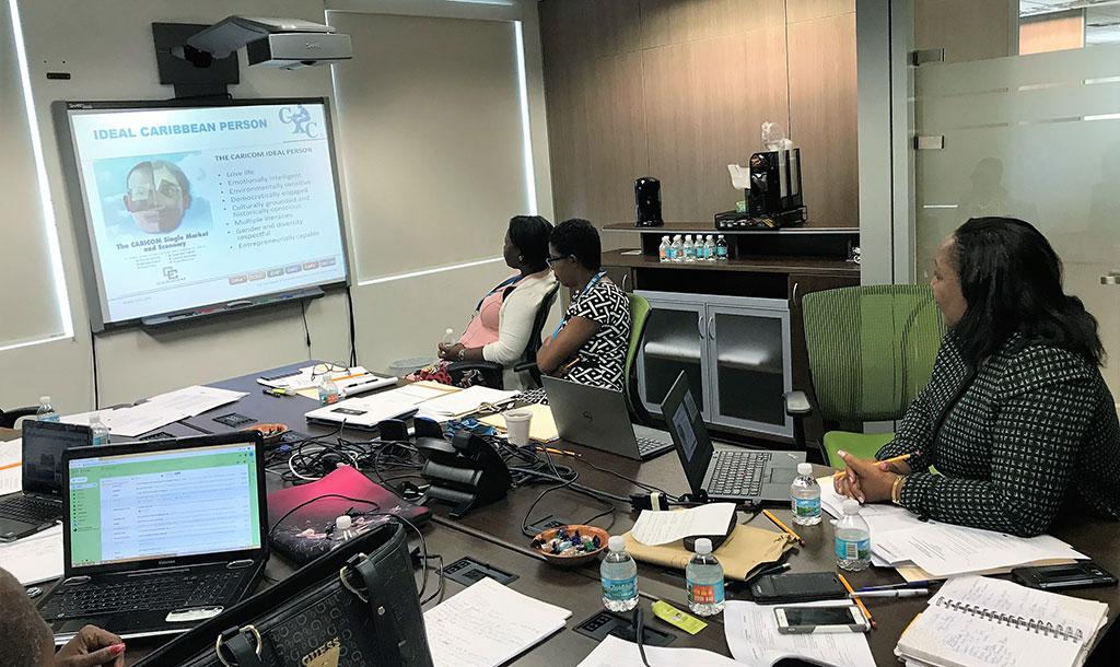 CCSLC participants at work